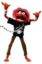 animal_muppet.jpg